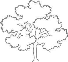 25 unique tree outline ideas on pinterest tree mural kids tree