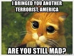 Sad Kitty Meme - i bringed you another terrorist america are you still mad sad