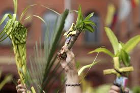 palm fronds for palm sunday holy week 2018 inspirational quotes wishes messages and
