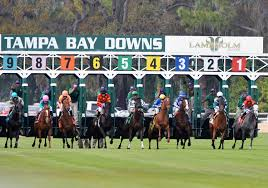 Tampa Bay Map Horse Racing Poker Dining Group Events Golf
