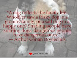 quotes about family funny 100 quote about family pets inspirational rescue dog quotes