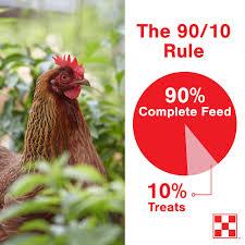 chicken treats u0026 snacks purina animal nutrition