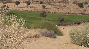 thar desert animals manvar thar desert agriculture stock video footage videoblocks