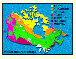 regions of canada map discover canada s wetlands chapter 3 wetland regions of canada