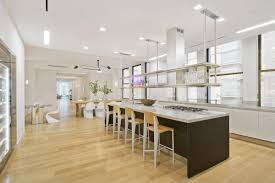 penthouse apartments new york top kirsten dunst nyc loft with