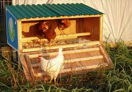 chicken coop small yard 3 small backyard chicken coop from