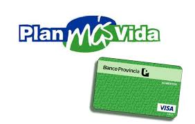 consulta de saldo visa vale social como obtener la visa vale social plan mas vida visa vale