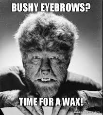 Bushy Eyebrows Meme - bushy eyebrows time for a wax make a meme
