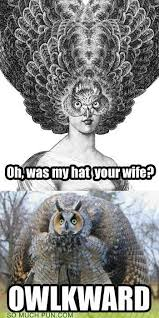 Art School Owl Meme - puns owl funny puns pun pictures cheezburger