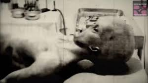 aliens latest claims this is a u0027genuine 1947 roswell alien