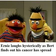 Bert And Ernie Meme - ernie and bert memes google search funny things pinterest