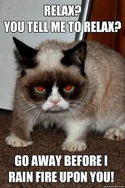Working Cat Meme - devil cat funny meme working fast bathumor
