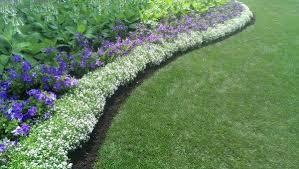 best garden edging ideas amazing of lawn edging ideas garden