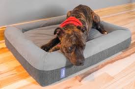tough dog beds the best dog beds reviews by wirecutter a new york times company