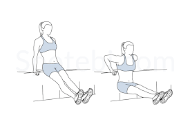 Triceps Bench Dips Tricep Dips Illustrated Exercise Guide