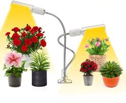 what is the best lighting for growing indoor led plant grow light seleady led growing light spectrum for indoor plants 50w indoor grow lights dual gooseneck growing light indoor