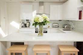small modern kitchens ideas kitchen delightful small contemporary kitchens design ideas in