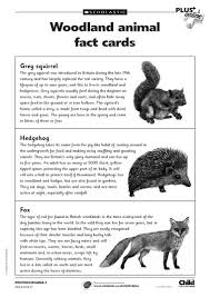 free primary animal worksheets animal fact cards to accompany