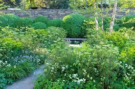 Summer Garden Ideas - a serene and elegant border idea for your garden