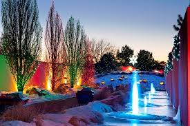 trail of lights denver it s another sparkling season for blossoms of light at the denver