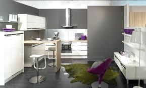 couleur meuble cuisine tendance peinture de cuisine tendance des meubles blancs qui ressortent