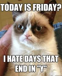 Today Is Friday Meme - today is friday cat meme cat planet cat planet