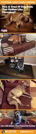 Barker Dog Bed 70 Best Big Barker Beauties Images On Pinterest Big Dogs Large