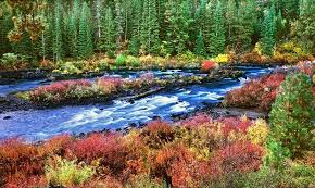 Oregon Nature Activities images Post wanderlust tours