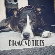 Gladiator Mt Tire Review Customer Recommendation Diamond Tires 25 Photos Tires 3596 S 300th W City Of South
