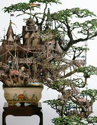 841 best bonsai images on bonsai trees bonsai plants
