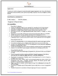 professional resume template accountant cv pdf gratuit du argumentative essay ban smoking in public places essay adoption