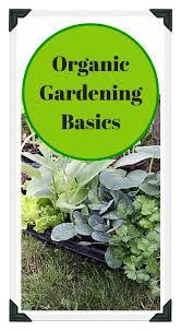 205 best vegetable gardening ideas organic diy images on pinterest