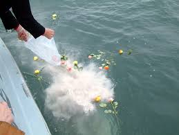 cremation ashes methods of scattering cremated ashes in the sea in toronto