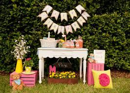a girlie teddy bear picnic party anders ruff custom designs llc