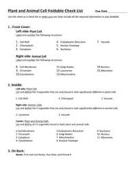 Resume For First Job For Students by First Job Resume Google Search Resume Pinterest Sample