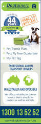 job quotes perth dogtainers pet transport perth pet transport services 9 184