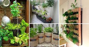 Ideas For Herb Garden Low Budget And Easy Container Ideas For Herb Garden