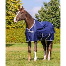 Buccas Rugs Bucas Freedom Turnout Light Pony Rug Horze