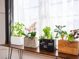 plant stand these diy floatingow shelves are the perfect way to