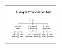sample basic organization chart 17 documents in word pdf