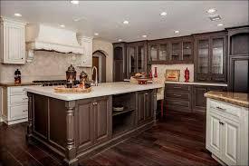 kitchen modern kitchen colours best color for kitchen cabinets