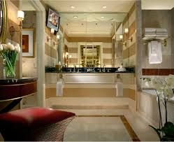 luxurious bathrooms pictures living room decoration