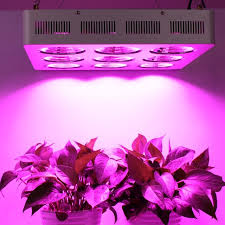 commercial led grow lights populargrow professional factory direct sale most powerful 1800w cob