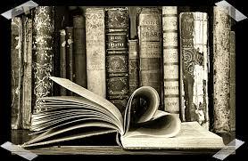 books wallpaper book lover wallpaper wallpapersafari