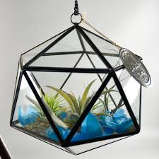 triangle shaped terrarium wholesale flowers and supplies