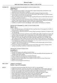 insurance resume exles insurance account executive resume sles velvet
