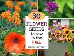 106 best gardening through fall images on pinterest pansies