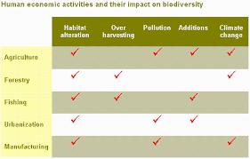 impacts on biodiversity