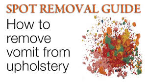 How To Remove Paint From Upholstery Remove Vomit Stains From Upholstery Spot Removal Guide