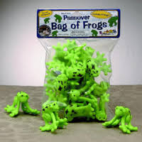 passover plagues bag bag of passover frogs